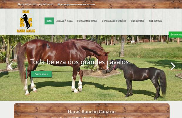 criação de site americana pôneis rancho canário